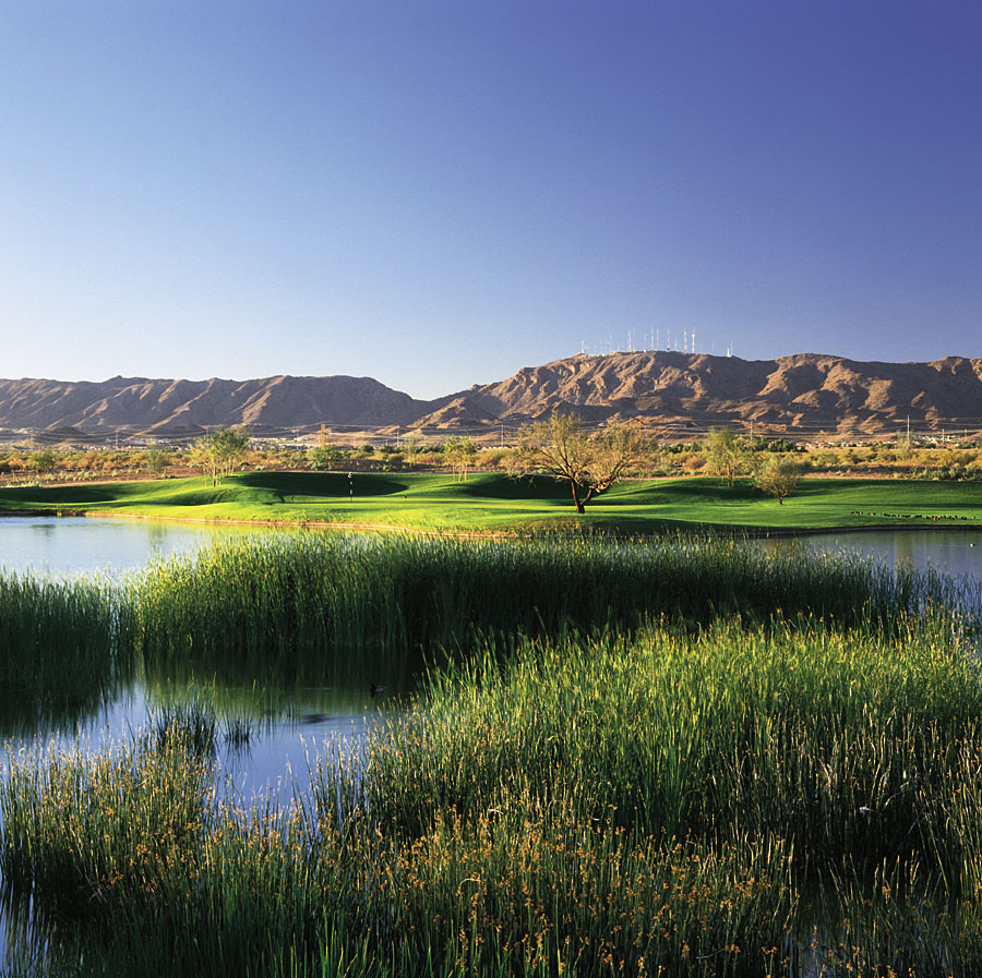 Whirlwind Golf Club -  Cattail